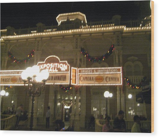 Walt Disney World Resort - Magic Kingdom - 12121 Wood Print by DC Photographer