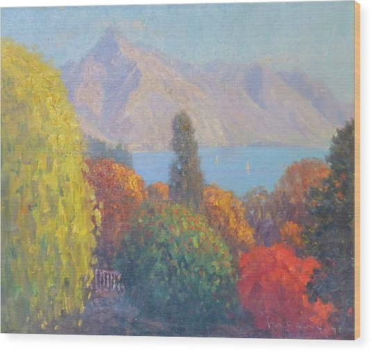Walter Peak Queenstown Nz Wood Print by Terry Perham