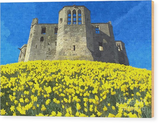 Warkworth Castle Daffodils Photo Art Wood Print by Les Bell