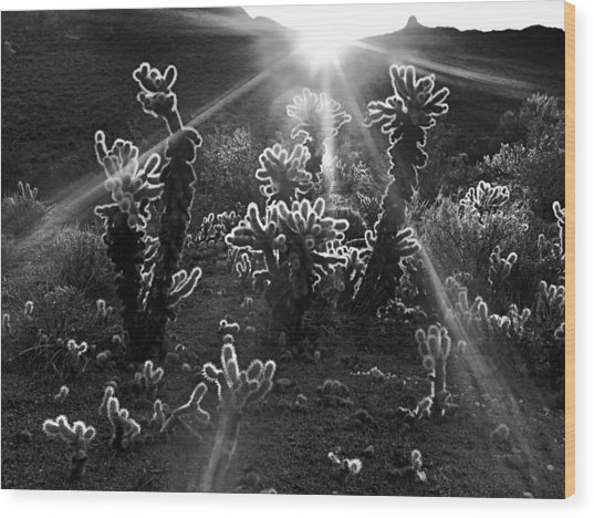Warm Desert Sunrise Wood Print by Leland D Howard