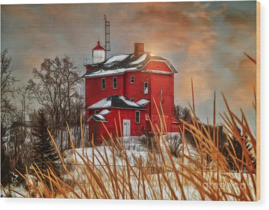 Warming By The Sun Wood Print by Upper Peninsula Photography