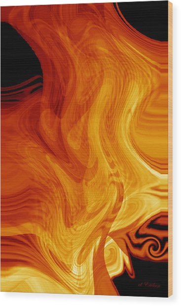 Warmth Wood Print by rd Erickson