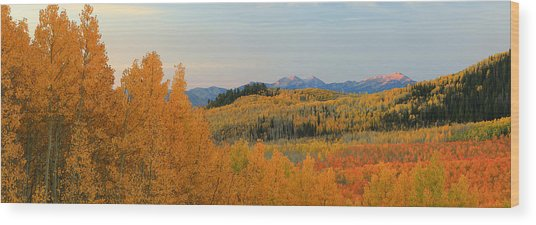 Wasatch Gold Wood Print