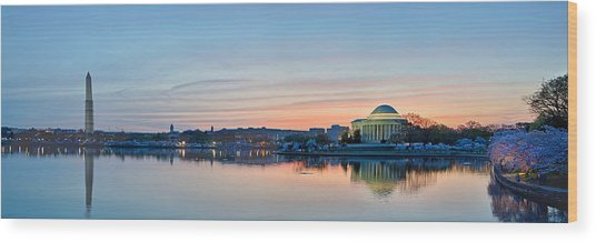 Wash Dc Cherry Blossoms Wood Print