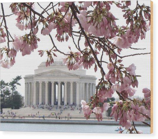 Washington Dc In Bloom Wood Print