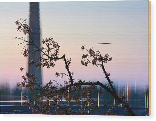 Washington Monument Reflection With Cherry Blossoms Wood Print