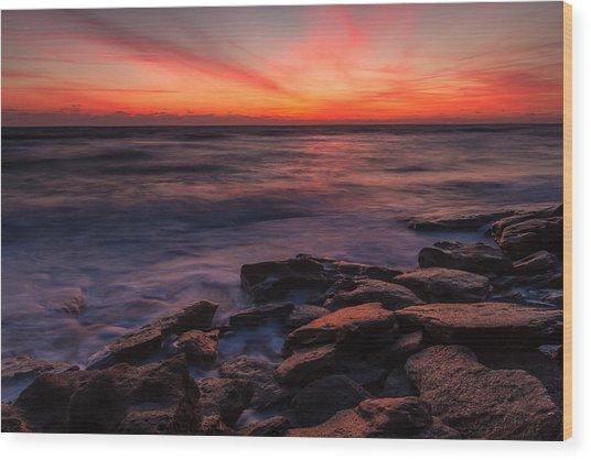 Washington Oaks Winter Sunrise Wood Print