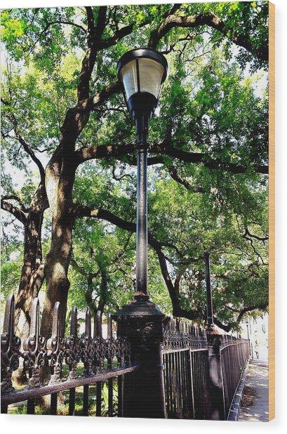 Washington Square Wood Print