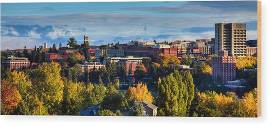 Washington State University In Autumn Wood Print