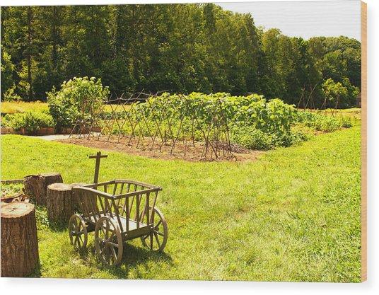 George Washington's Garden Wood Print