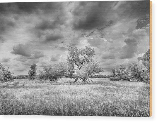 Washita Wood Print by Harry H Hicklin