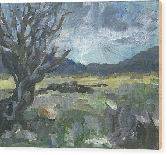 Washoe Valley Wood Print by Susan Moore