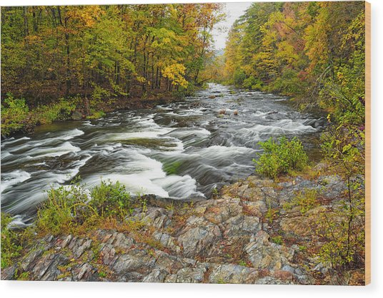 Watching It All Go By  At Beaver's Bend Broken Bow Fall  Foliage Oklahoma Wood Print