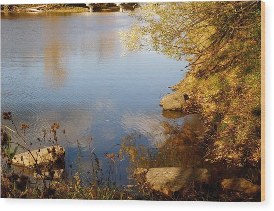 Water Beauty Wood Print by Jocelyne Choquette