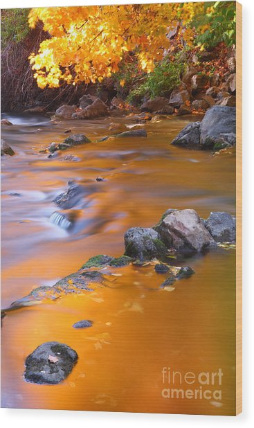 Water Color Gold Wood Print