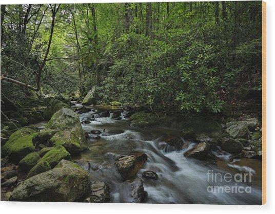 Water Falls And Rocks Wood Print by Mina Isaac