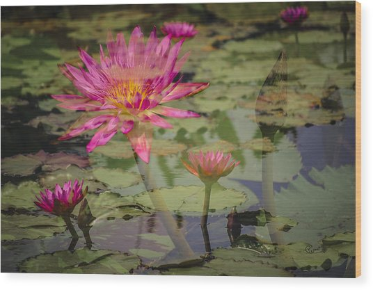 Water Garden Dream Wood Print