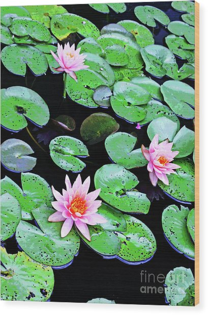 Water Lillies -- Inspired By Monet-2 Wood Print