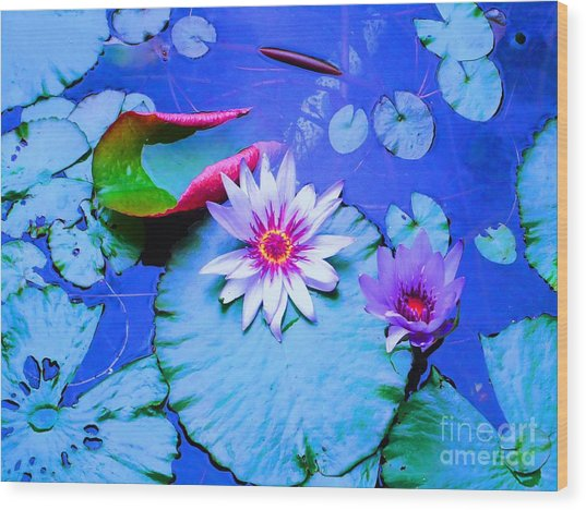 Water Lily I Wood Print