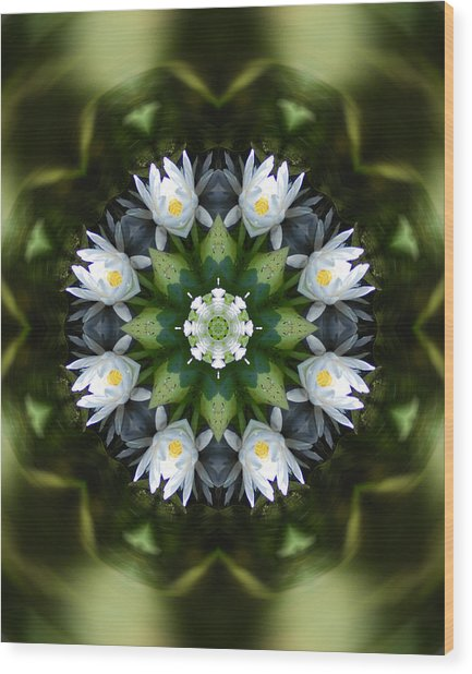 Water Lily Mandala Wood Print by Peter Kallai