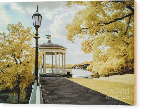 Water Works And Boathouse Row Wood Print