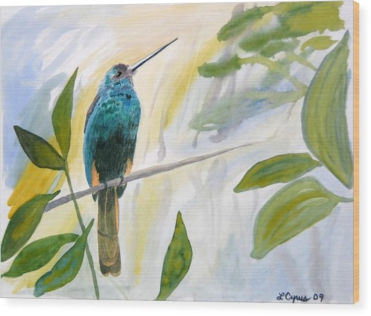 Watercolor - Jacamar In The Rainforest Wood Print