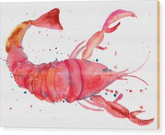 Watercolor Illustration Of Lobster Wood Print