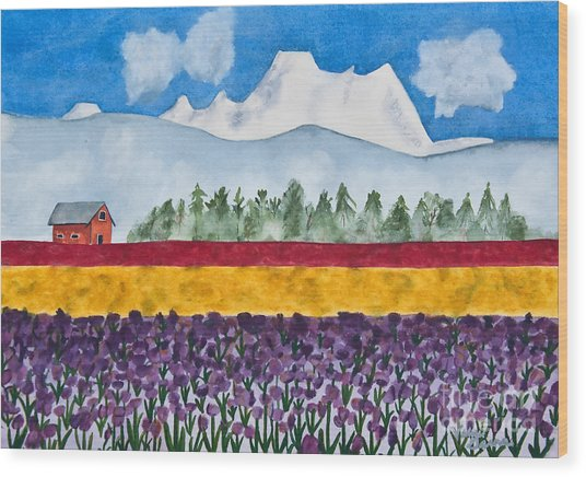 Watercolor Painting Landscape Of Skagit Valley Tulip Fields Art Wood Print