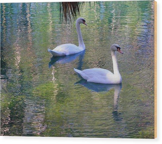 Watercolor Swans Wood Print