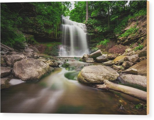 Waterdown Falls - 01 Wood Print