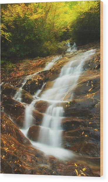 Waterfall @ Sams Branch Wood Print