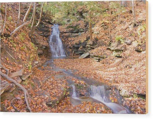 Waterfall In The Fall Wood Print