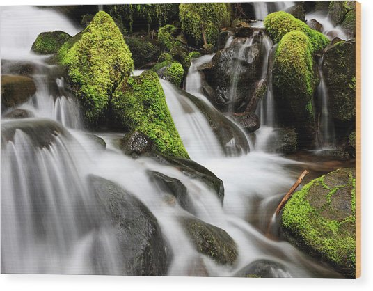 Waterfall Olympic National Park Wood Print