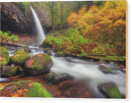Waterfall With Autumn Colors Wood Print