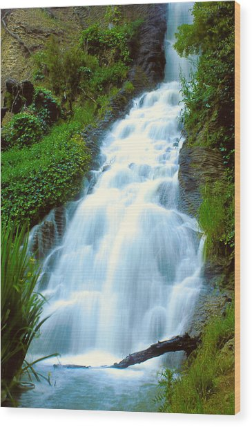Waterfalls In Golden Gate Park Wood Print