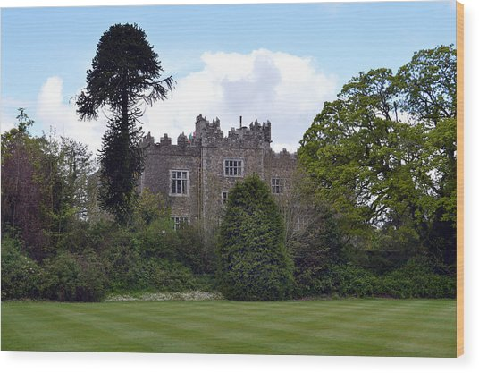 Waterford Castle Ireland. Wood Print by Terence Davis