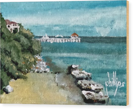 Waterfront At Southport Wood Print