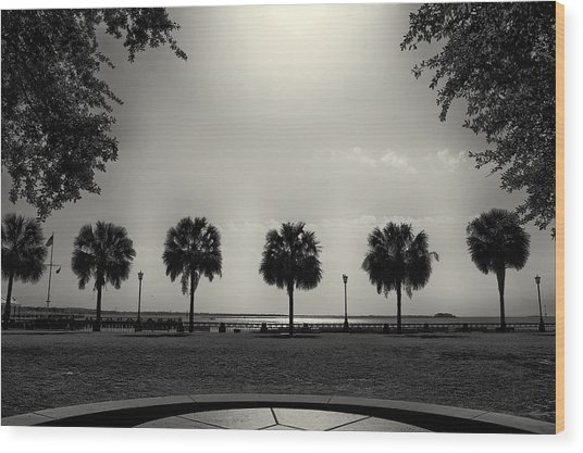 Waterfront Park Wood Print