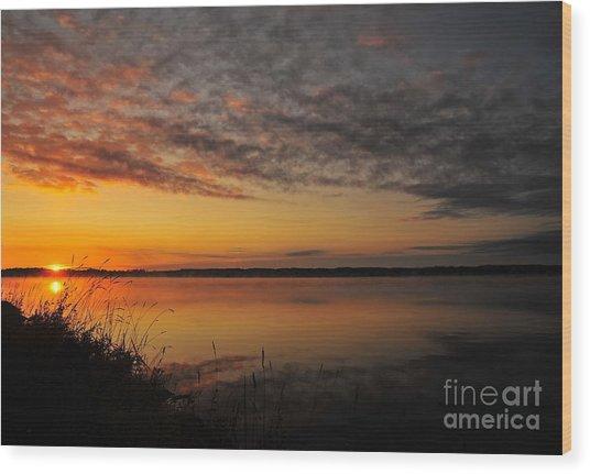 Waterfront Dawn Wood Print