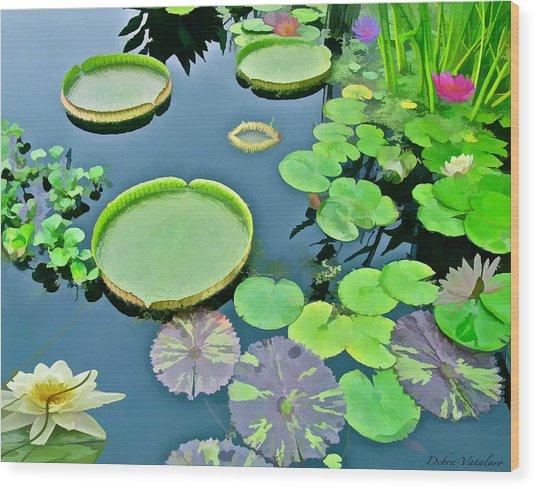 Watergarden  Wood Print by Debra     Vatalaro