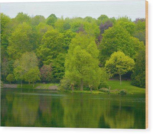 Waters Edge Wood Print by Rob Sherwood