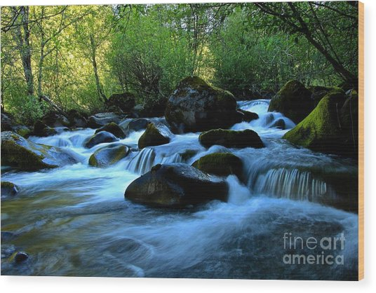 Waters Majestic Wood Print by Tim Rice
