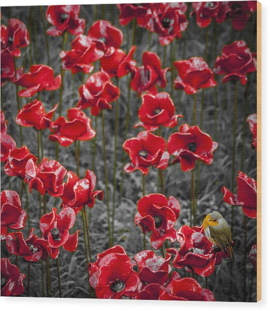 We Will Remember Them Wood Print by S J Bryant