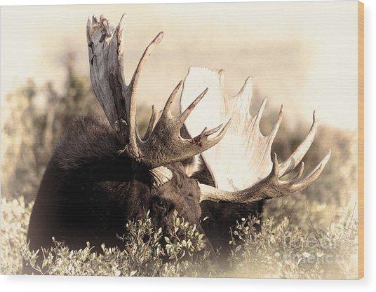 Wear A Crown Wood Print