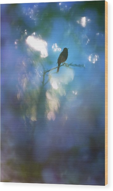 Weather To Fly  Wood Print