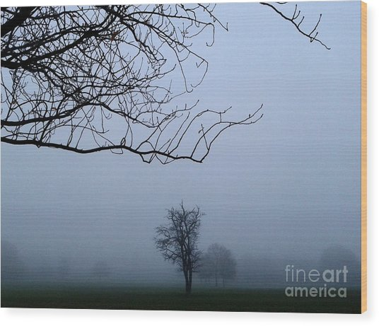 Weather Wood Print by V Waddingham