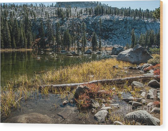 Weaver Lake- 1-7692 Wood Print by Stephen Parker