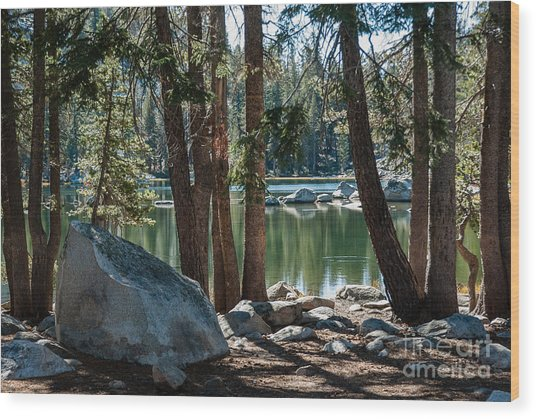 Weaver Lake  1-7700 Wood Print