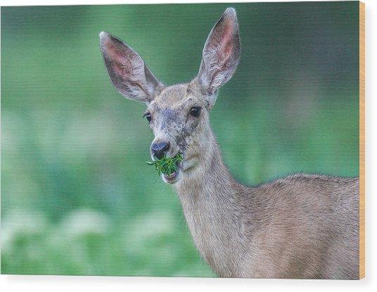 Weed Deer Wood Print