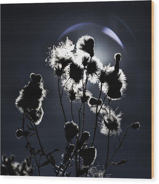 Weed Silhouette Wood Print